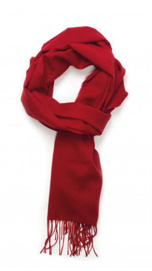 Ruby Solid Lightweight Scarf Cashmere Scarf