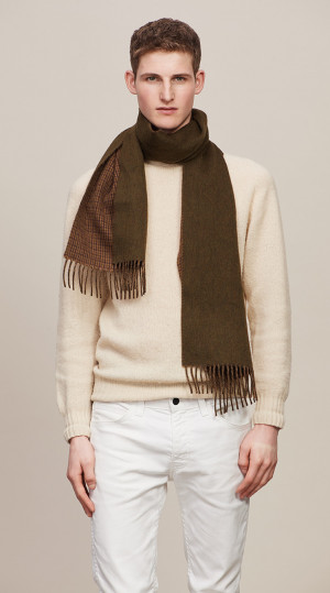 Camel, Olive & Muscat Houndstooth On Solid Double Face Scarf