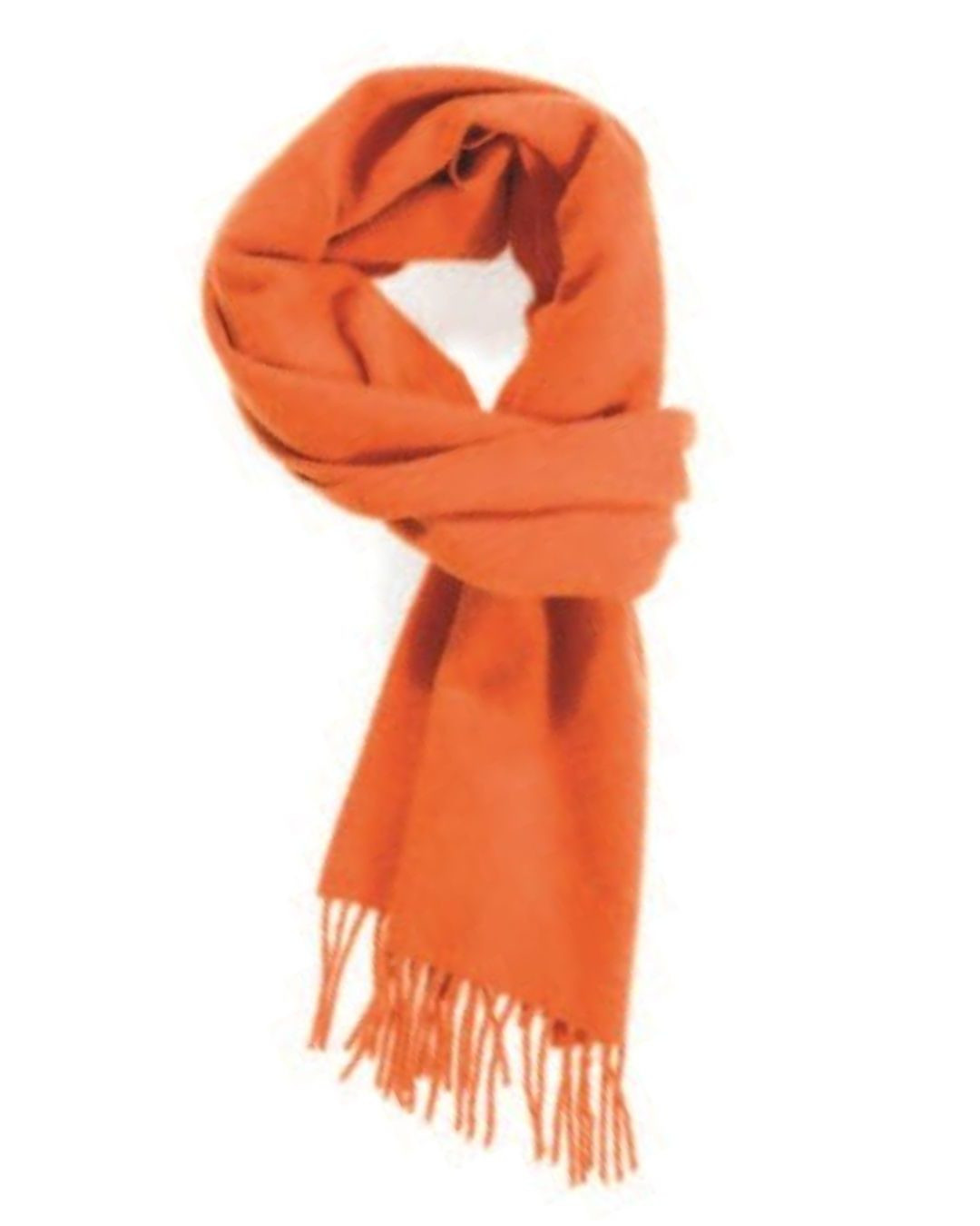 Bengal Tiger Classic Cashmere Scarf