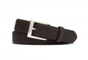 Chocolate Shark Belt with Brushed Nickel Buckle