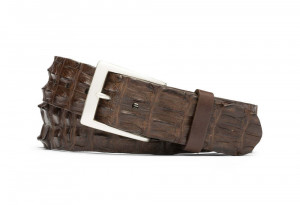 Chocolate Hornback Crocodile Tail Belt with Brushed Nickel Buckle