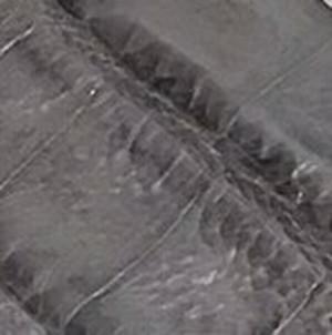 Grey Caiman Crocodile Belt with Brushed Nickel Buckle