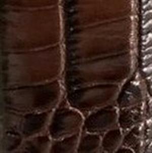 Chocolate Embossed Crocodile Belt with Plaque Buckle