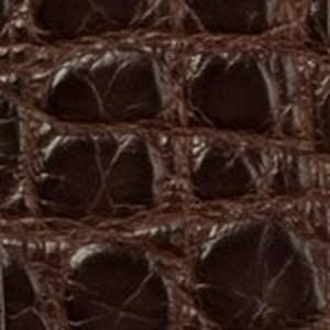 Chocolate Matte Alligator Belt with Oring Buckles